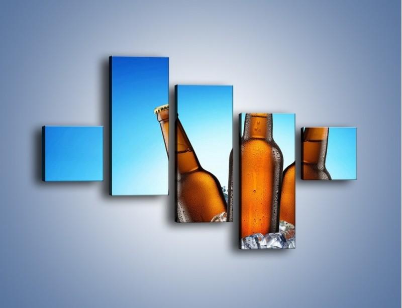Obraz na płótnie – Szron na butelkach piwa – pięcioczęściowy JN075W3