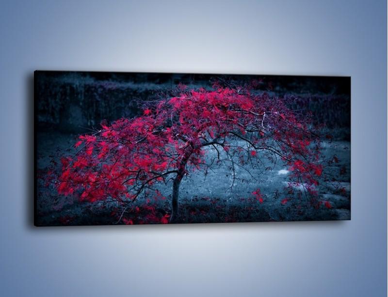 Obraz na płótnie – Czerwone płaczące drzewo – jednoczęściowy panoramiczny KN1101A