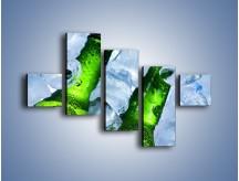 Obraz na płótnie – Czas na zimne piwko – pięcioczęściowy JN148W3