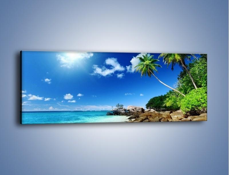 Obraz na płótnie – Palmą aż do obłoczka – jednoczęściowy panoramiczny KN1107A