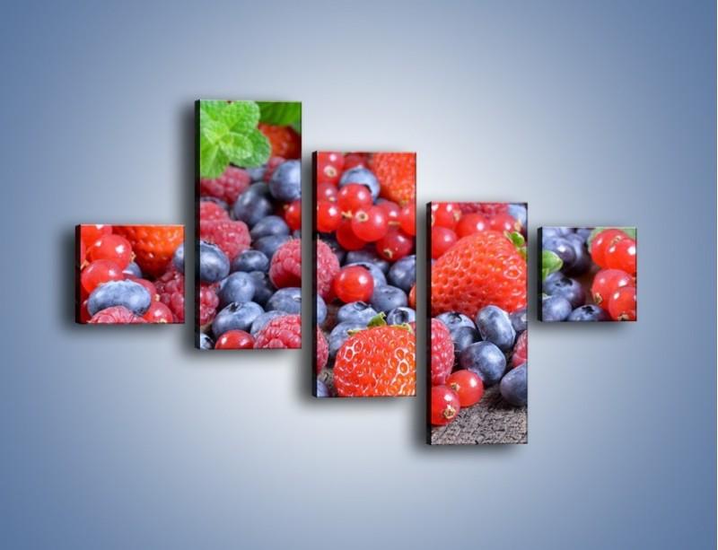 Obraz na płótnie – Owoce z działki – pięcioczęściowy JN422W3