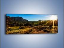 Obraz na płótnie – Piaszczystą drogą przez zieleń – jednoczęściowy panoramiczny KN1108A