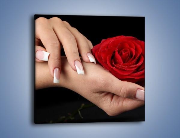 Obraz na płótnie – Czerwona róża w dłoni – jednoczęściowy kwadratowy K037