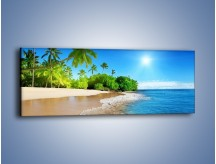 Obraz na płótnie – Bajeczne wakacyjne wspomnienia – jednoczęściowy panoramiczny KN1110A