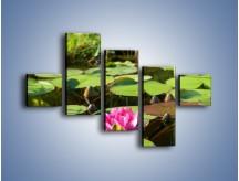 Obraz na płótnie – Ciemno-różowy nenufar na wodzie – pięcioczęściowy K014W3