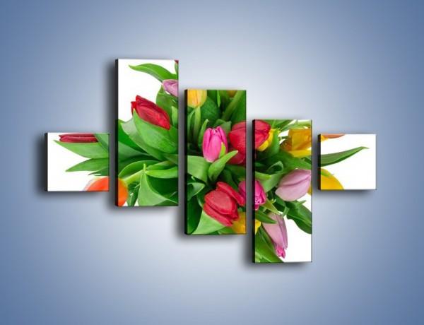 Obraz na płótnie – Wiązanka kolorowych tulipanów – pięcioczęściowy K019W3