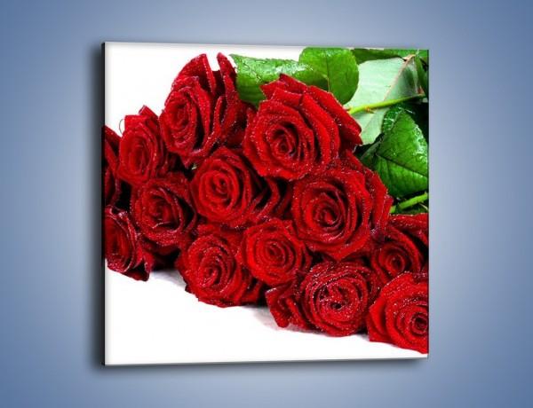 Obraz na płótnie – Oszronione czerwone róże – jednoczęściowy kwadratowy K047