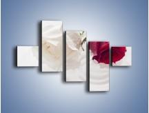 Obraz na płótnie – Róża biała czy czerwona – pięcioczęściowy K077W3