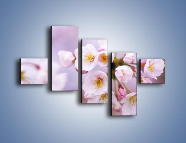 Obraz na płótnie – Gałązka kwiatów jabłoni – pięcioczęściowy K102W3