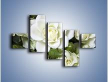 Obraz na płótnie – Białe róże na stole – pięcioczęściowy K131W3