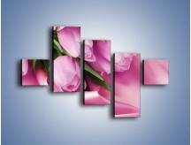 Obraz na płótnie – Atłas wśród tulipanów – pięcioczęściowy K152W3