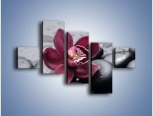 Obraz na płótnie – Bordowy storczyk i ciemne towarzystwo – pięcioczęściowy K156W3