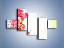 Obraz na płótnie – Akcent kwiatowy – pięcioczęściowy K268W3