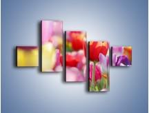 Obraz na płótnie – Boso przez tulipany – pięcioczęściowy K344W3