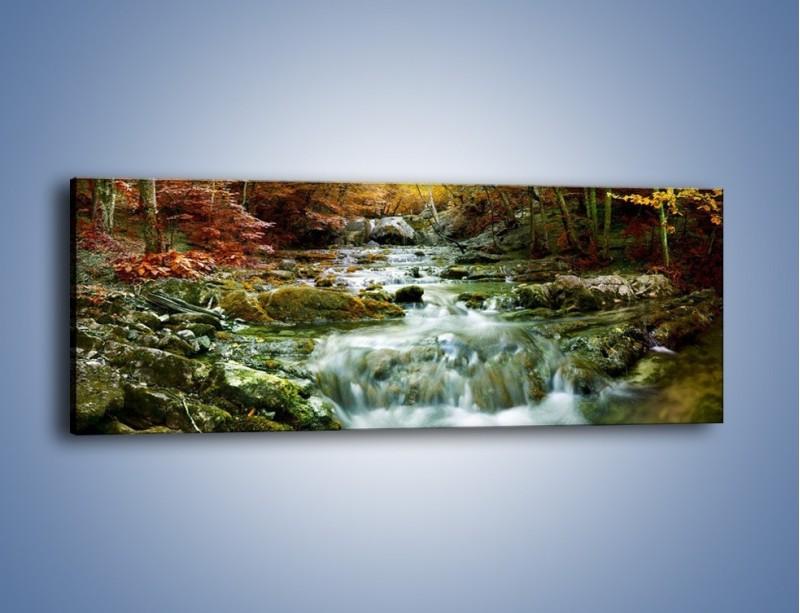 Obraz na płótnie – Wilgoć w lesie – jednoczęściowy panoramiczny KN1118A