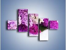 Obraz na płótnie – Bez w różnych kolorach – pięcioczęściowy K389W3