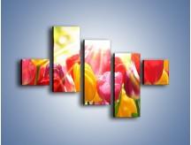 Obraz na płótnie – Bajecznie słoneczne tulipany – pięcioczęściowy K428W3