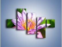 Obraz na płótnie – Wesoły kwiat w słońcu – pięcioczęściowy K455W3