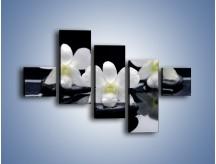 Obraz na płótnie – Biel w kwiecie nocą – pięcioczęściowy K512W3