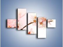 Obraz na płótnie – Blask kwiatów jabłoni – pięcioczęściowy K569W3