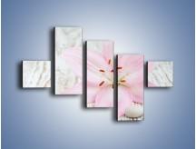 Obraz na płótnie – Cała słodycz w lilii – pięcioczęściowy K727W3
