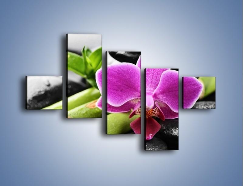 Obraz na płótnie – Idealnie ułożony kwiat – pięcioczęściowy K931W3
