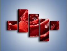 Obraz na płótnie – Chłód w różanych płatkach – pięcioczęściowy K932W3