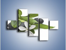 Obraz na płótnie – Artystyczna kompozycja z kwiatem – pięcioczęściowy K968W3