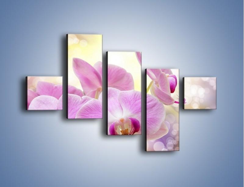 Obraz na płótnie – Lila kwiaty o poranku – pięcioczęściowy K976W3