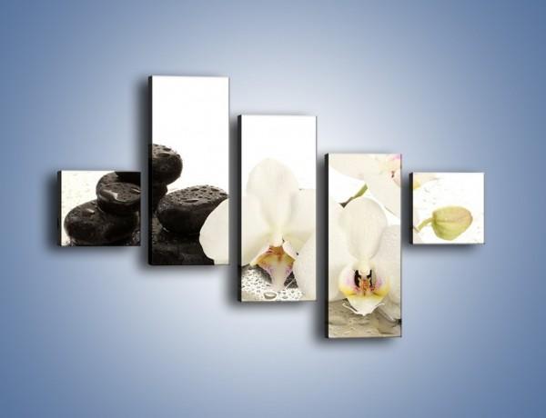 Obraz na płótnie – Mokre kwiaty i kamienie – pięcioczęściowy K986W3