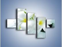 Obraz na płótnie – Białe kwiaty w potoku – pięcioczęściowy K991W3
