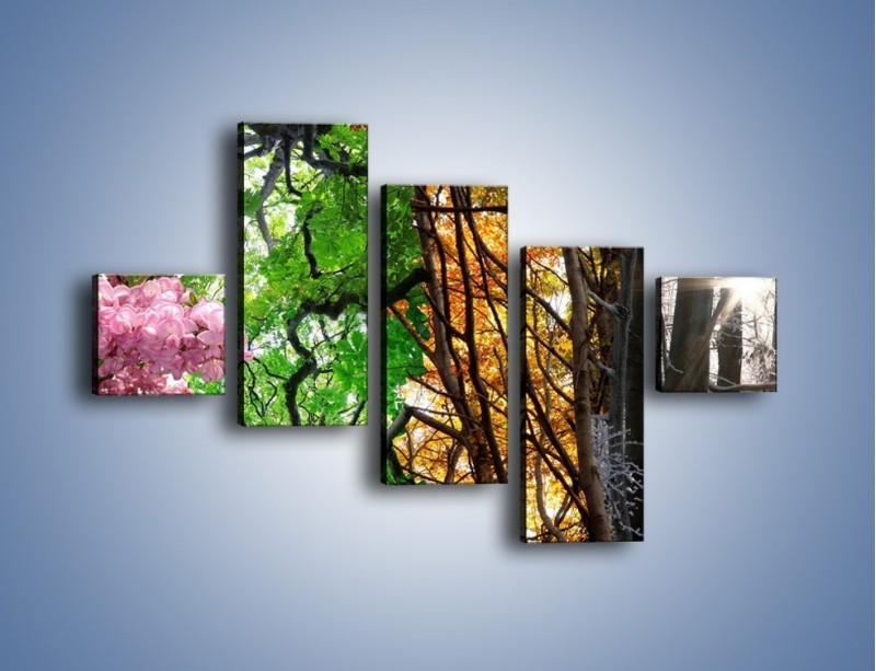 Obraz na płótnie – Drzewa w różnych kolorach – pięcioczęściowy KN037W3