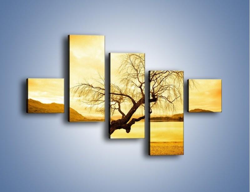 Obraz na płótnie – Pochylone drzewo w sepii – pięcioczęściowy KN1033W3