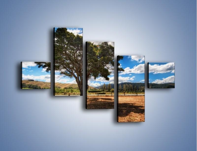 Obraz na płótnie – Cień pod rozłożystym drzewem – pięcioczęściowy KN1037W3