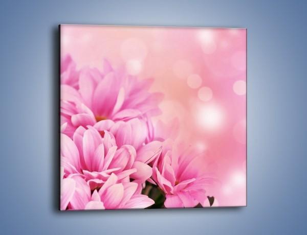 Obraz na płótnie – Kule świetlne i kwiaty – jednoczęściowy kwadratowy K073