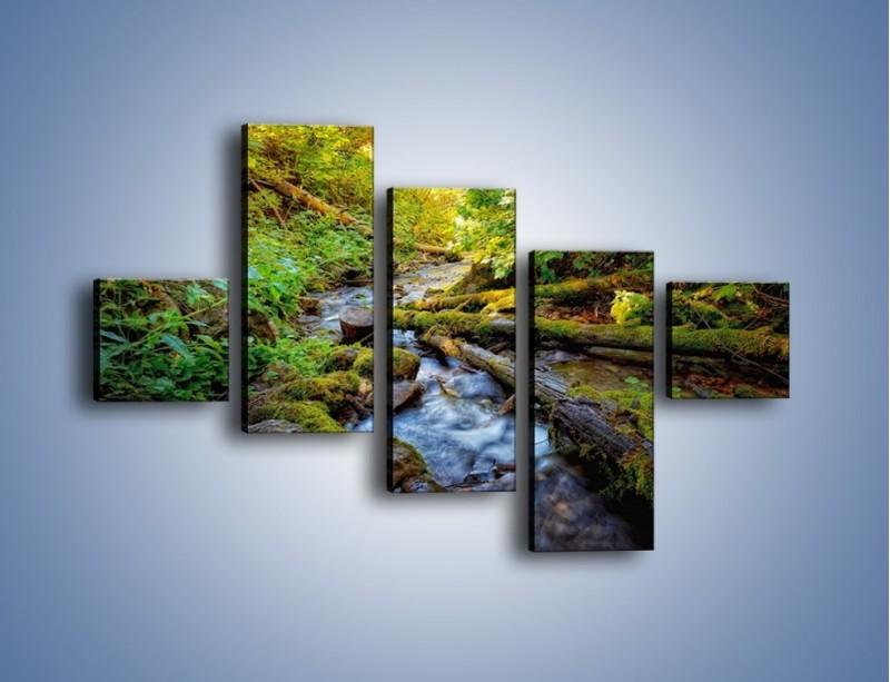 Obraz na płótnie – Drewno ścięte do wody – pięcioczęściowy KN1059W3