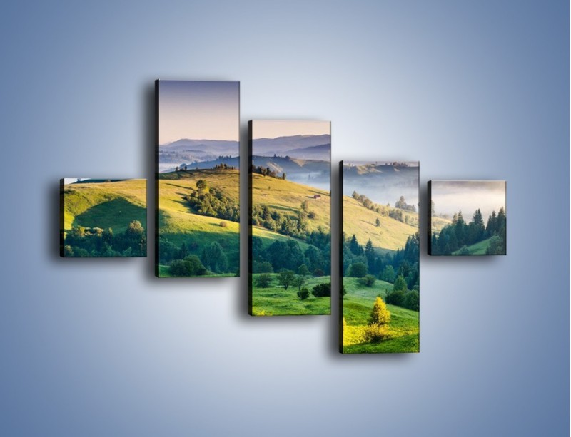 Obraz na płótnie – Tylko zieleń i góry – pięcioczęściowy KN1084W3