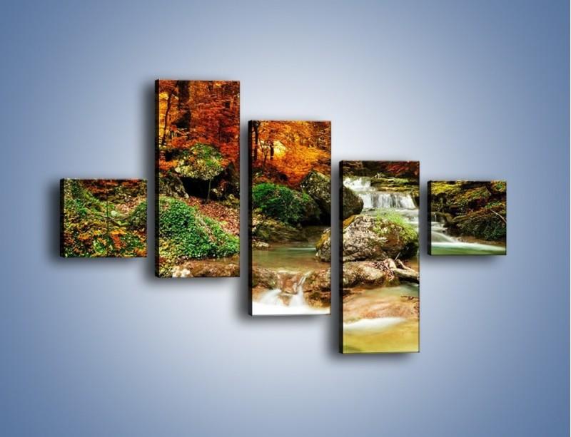 Obraz na płótnie – Jesienne kolory w lesie – pięcioczęściowy KN1094AW3