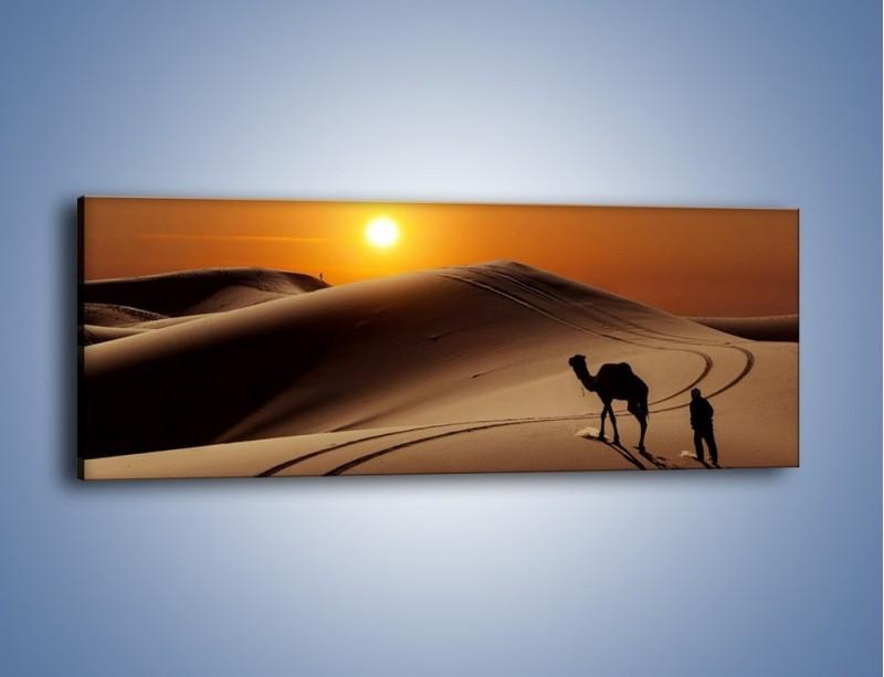 Obraz na płótnie – Człowiek wielbłąd i wydmy – jednoczęściowy panoramiczny KN1134A