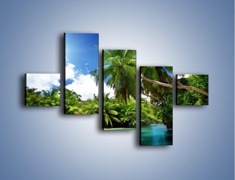 Obraz na płótnie – Rozłożone palmy i woda – pięcioczęściowy KN1168AW3