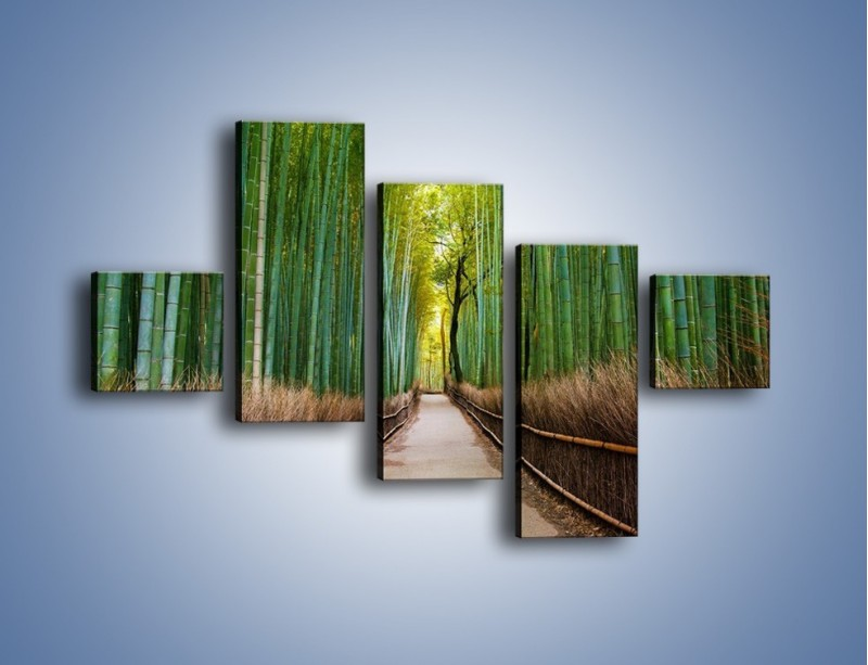 Obraz na płótnie – Bambusowy las – pięcioczęściowy KN1187AW3