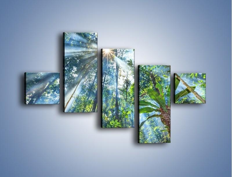 Obraz na płótnie – Dyzio marzyciel i drzewa – pięcioczęściowy KN1189AW3