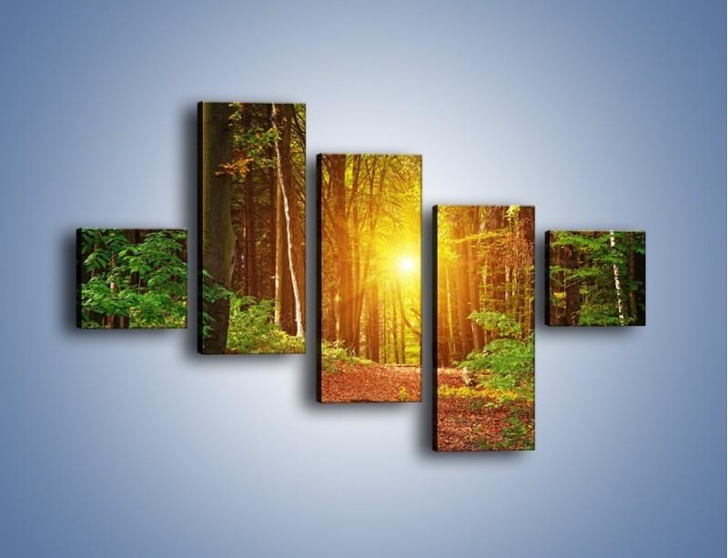Obraz na płótnie – Polski krajobraz leśny – pięcioczęściowy KN1257AW3