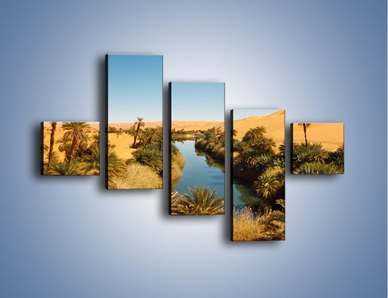 Obraz na płótnie – Woda woda na pustyni – pięcioczęściowy KN1294AW3