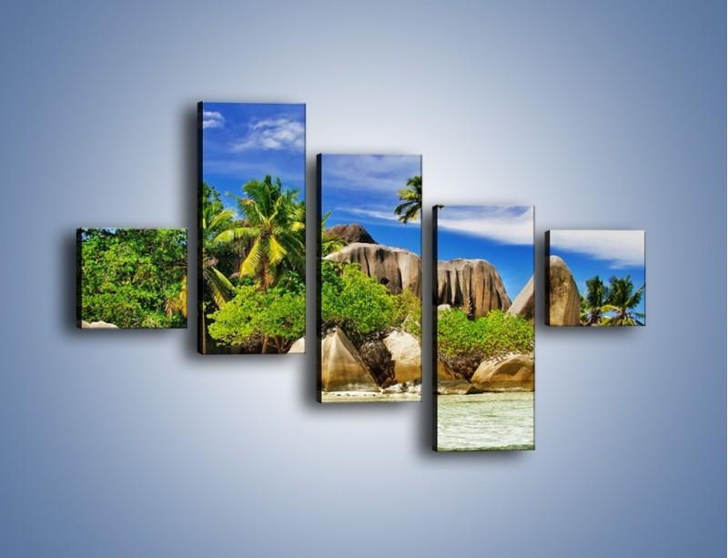 Obraz na płótnie – Tropiki i ich wysokości – pięcioczęściowy KN1306AW3