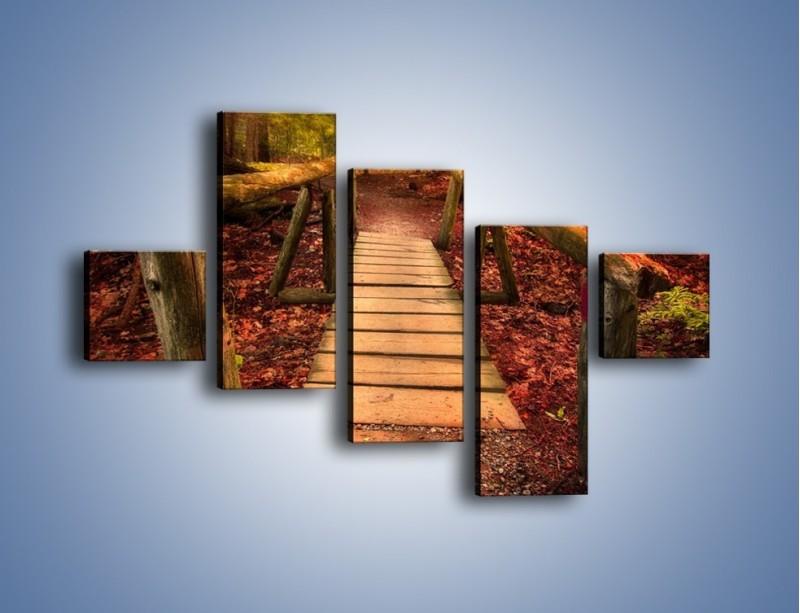 Obraz na płótnie – Krótkie przejście przez las – pięcioczęściowy KN1330AW3