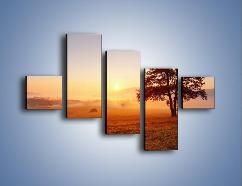 Obraz na płótnie – Krajobraz utopiony we mgle – pięcioczęściowy KN1331AW3