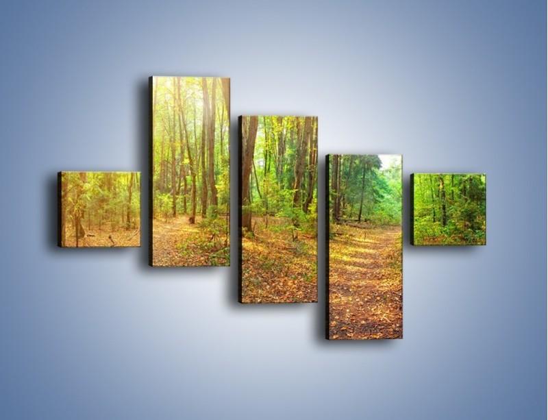 Obraz na płótnie – Przejrzysty piękny las – pięcioczęściowy KN1344AW3