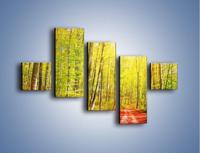 Obraz na płótnie – Brzózki liście i las – pięcioczęściowy KN1345AW3