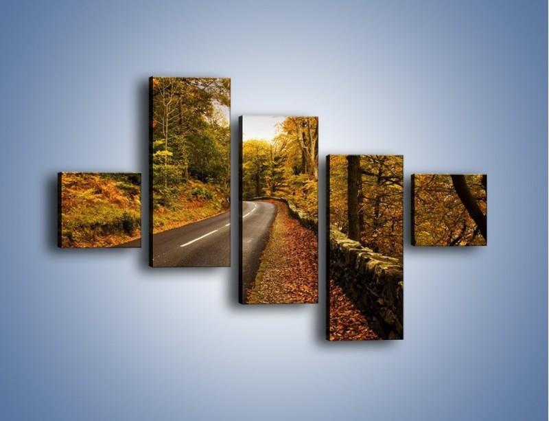 Obraz na płótnie – Asfaltową droga przez las – pięcioczęściowy KN169W3